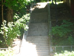 Lower VCPS step street